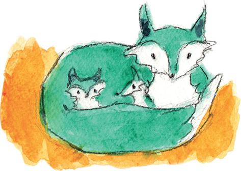 Livre de naissance famille homoparentale•renard en boule